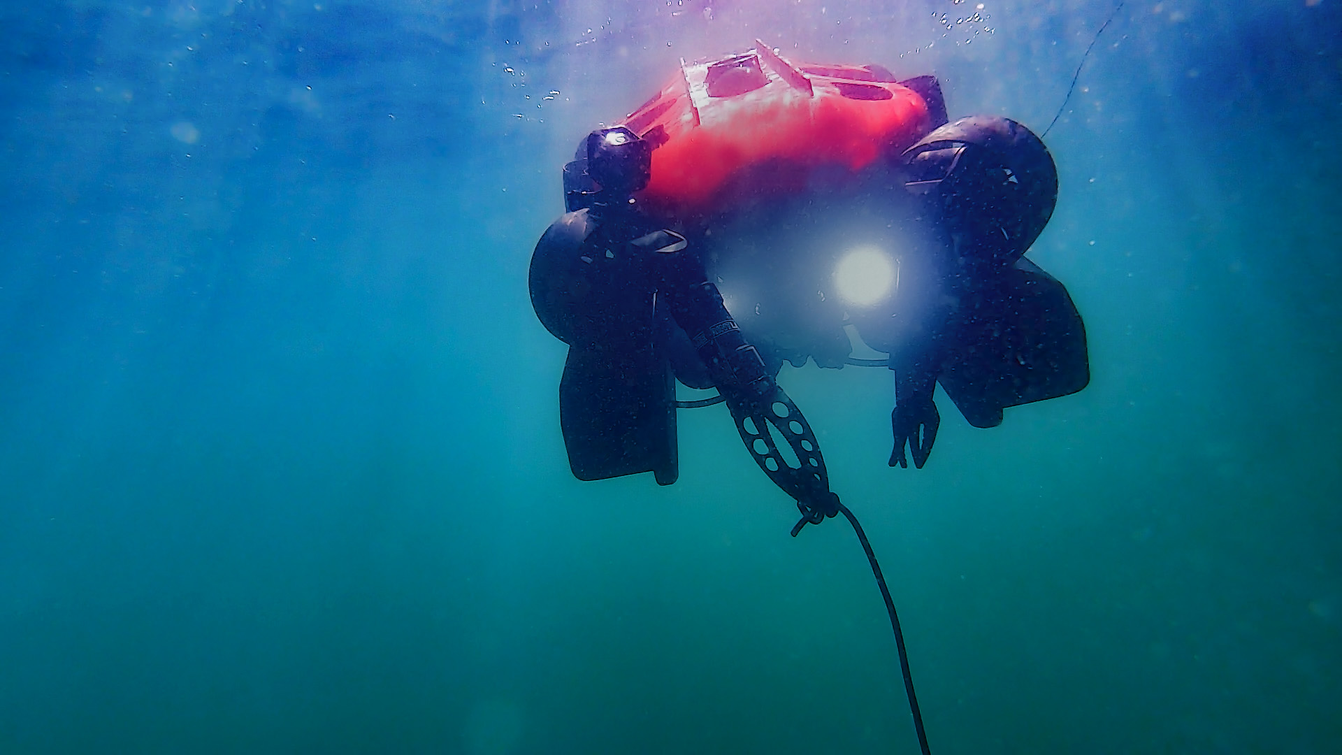 A test dive in Sydney Harbour 2021